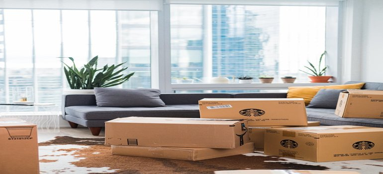 expedited shipping - several moving boxes inside the living room during the dayligt